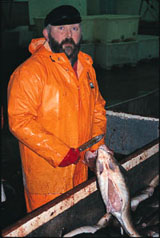 A fisherman gutting his catch.