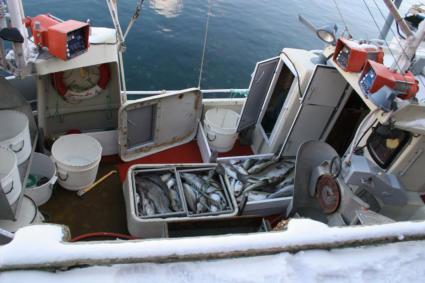 finn ekkolodd til båt